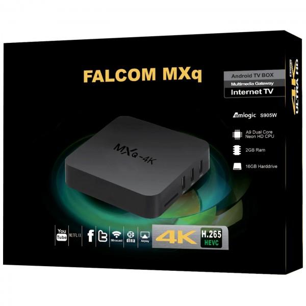 Falcom MXQ-4K 2GB